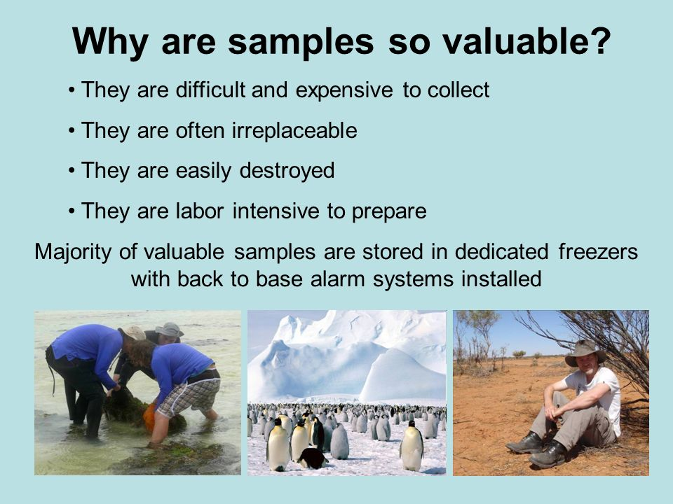 Why are samples so valuable