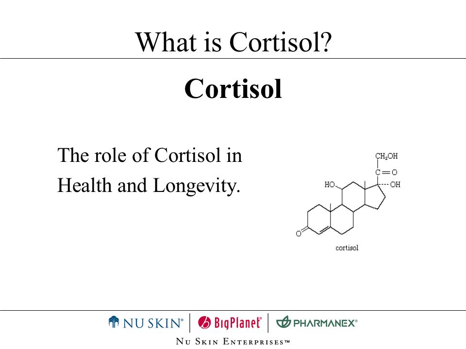 What is Cortisol Cortisol The role of Cortisol in