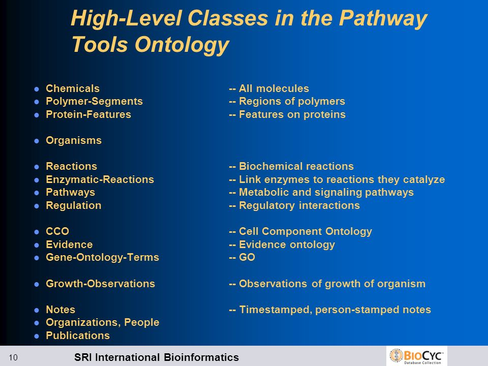 High-Level Classes in the Pathway Tools Ontology