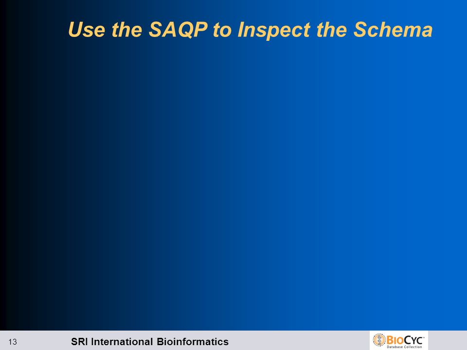 Use the SAQP to Inspect the Schema