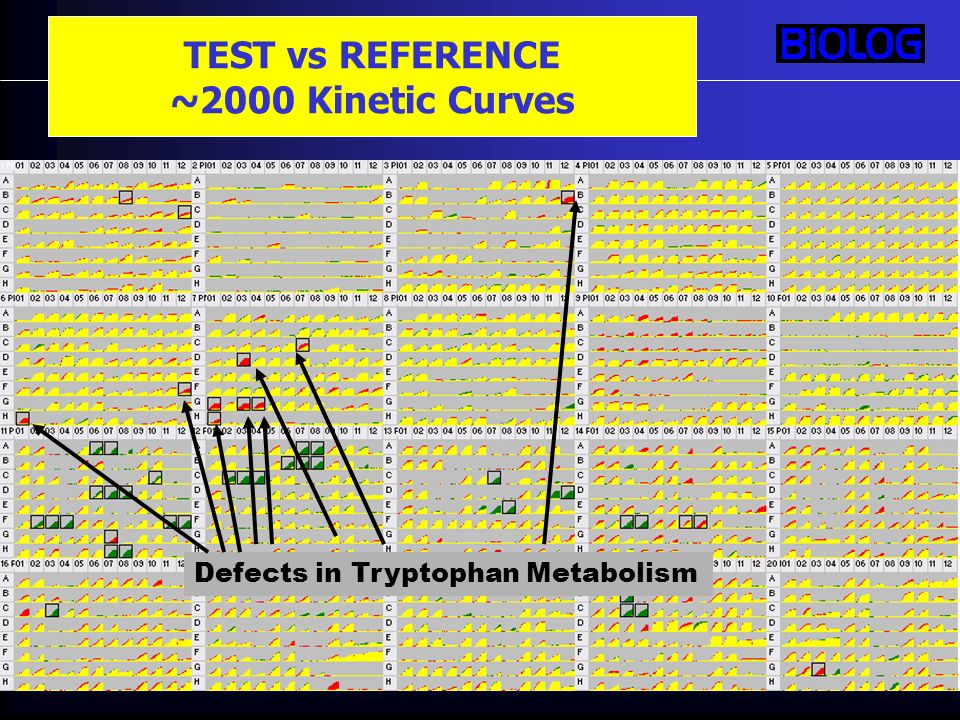 TEST vs REFERENCE ~2000 Kinetic Curves