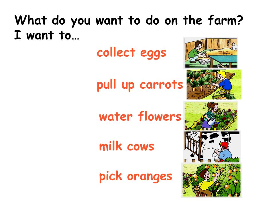What do you want to do on the farm