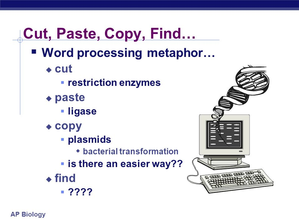 Cut, Paste, Copy, Find… Word processing metaphor… cut paste copy find
