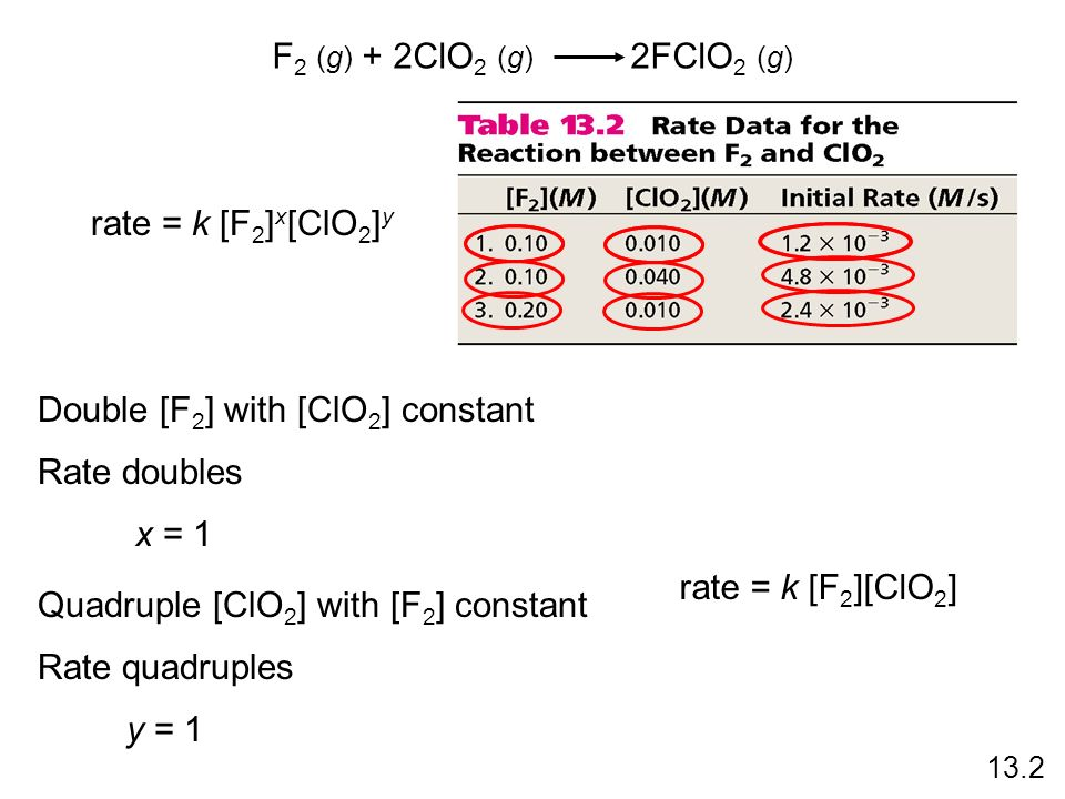Double [F2] with [ClO2] constant