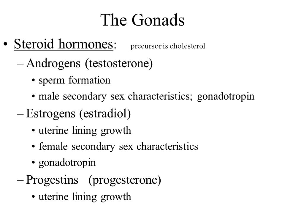 The Gonads Steroid hormones: precursor is cholesterol
