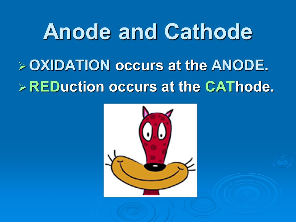 Anode and Cathode OXIDATION occurs at the ANODE.