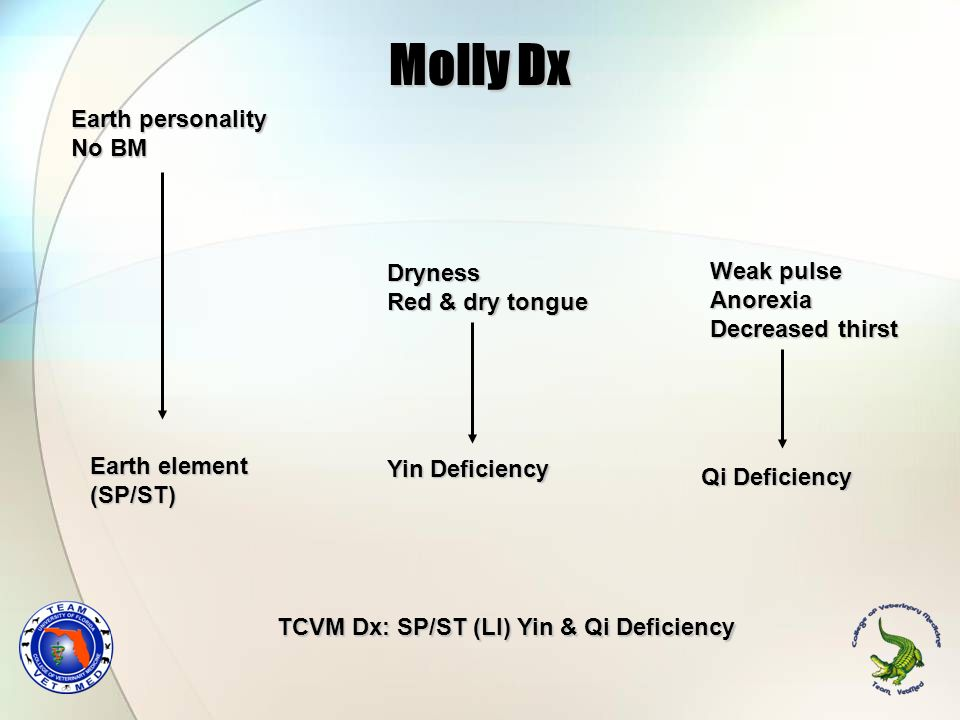 Molly Dx Earth personality No BM Dryness Weak pulse Red & dry tongue