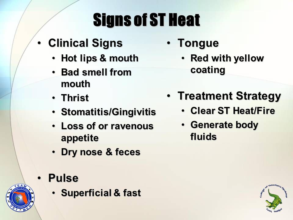 Signs of ST Heat Clinical Signs Pulse Tongue Treatment Strategy