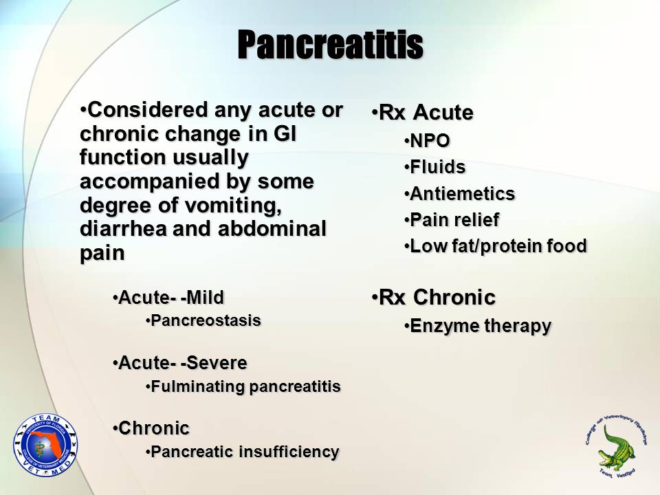 Pancreatitis Considered any acute or chronic change in GI function usually accompanied by some degree of vomiting, diarrhea and abdominal pain.