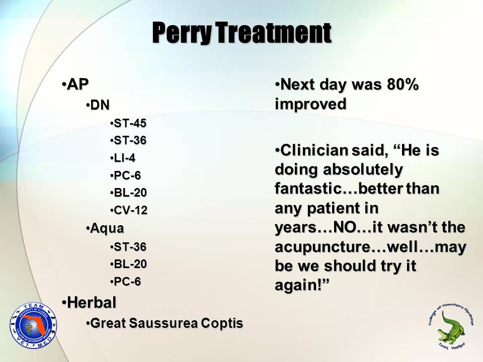 Perry Treatment AP Herbal Next day was 80% improved
