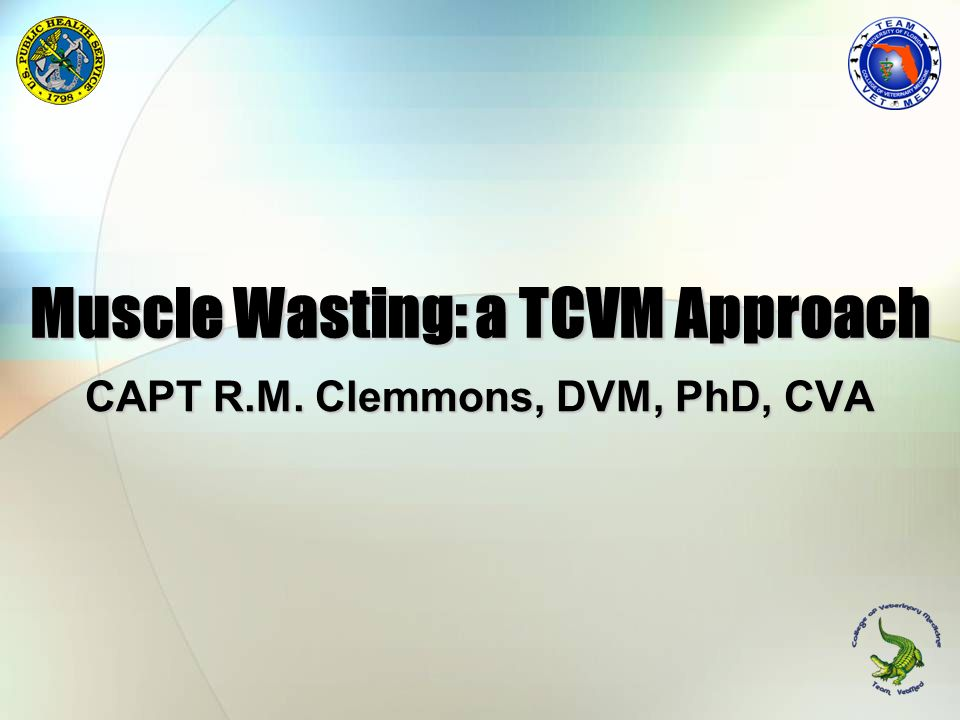 Muscle Wasting: a TCVM Approach
