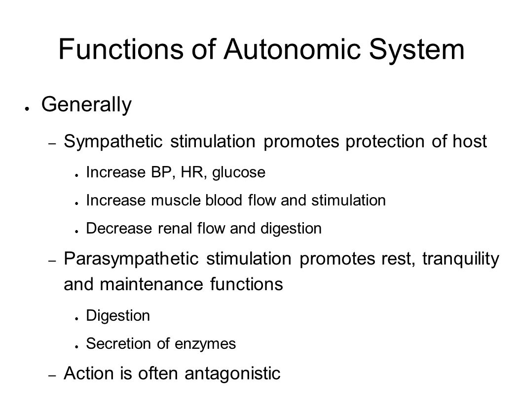 Functions of Autonomic System