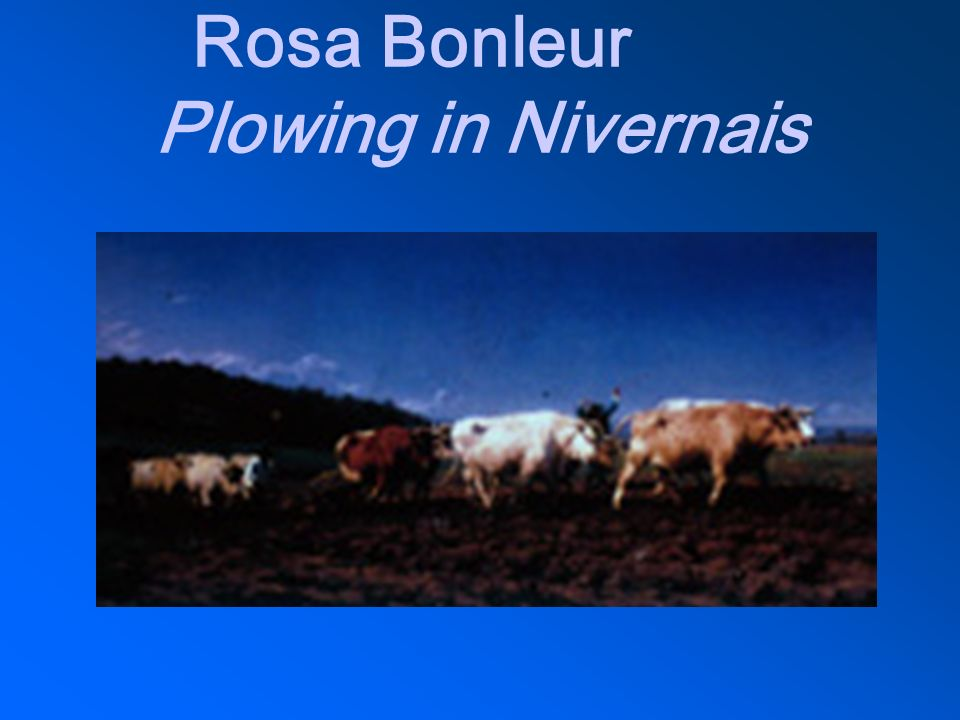 Rosa Bonleur Plowing in Nivernais