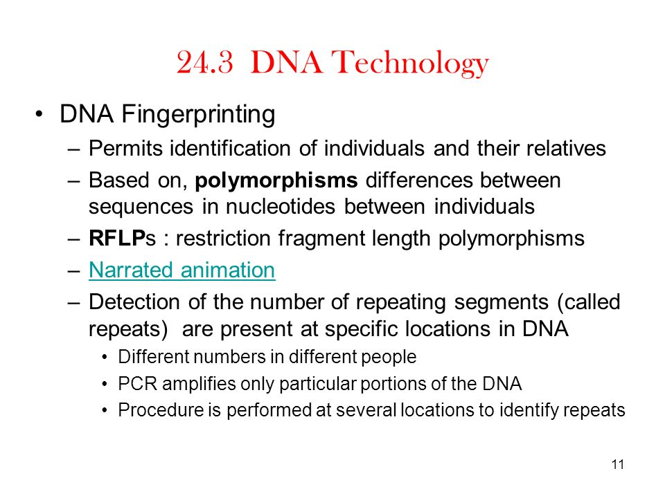24.3 DNA Technology DNA Fingerprinting