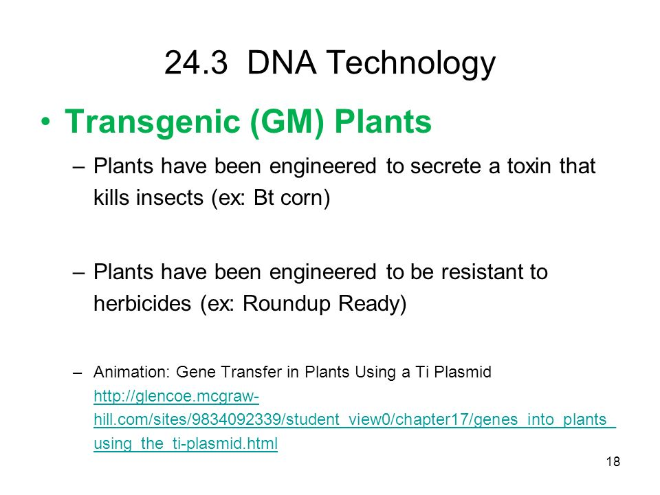 Transgenic (GM) Plants