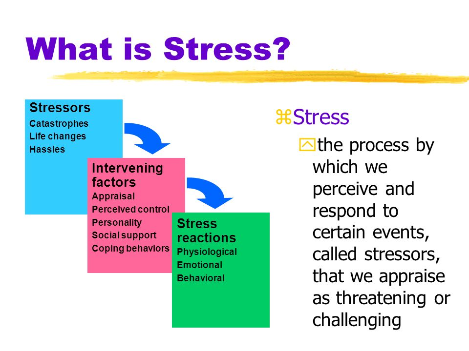 What is Stress Stressors. Catastrophes. Life changes. Hassles. Intervening. factors. Appraisal.