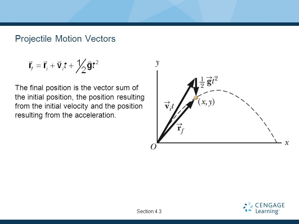 Projectile Motion Vectors