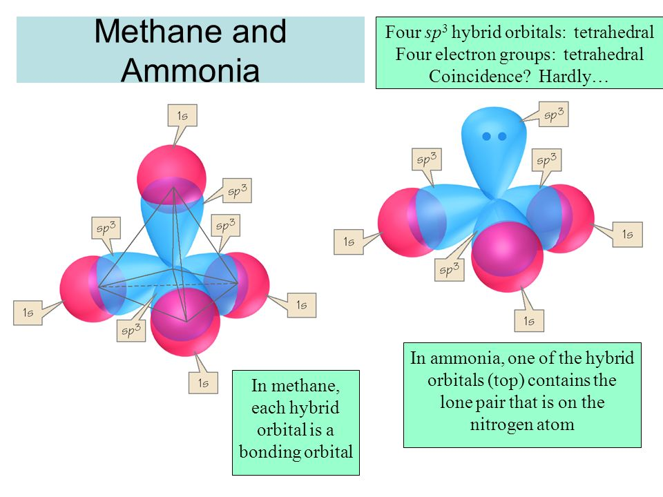 Methane and Ammonia Four sp3 hybrid orbitals: tetrahedral