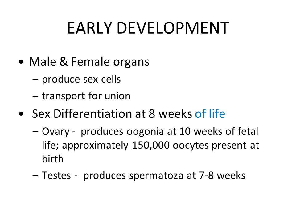 EARLY DEVELOPMENT Male & Female organs