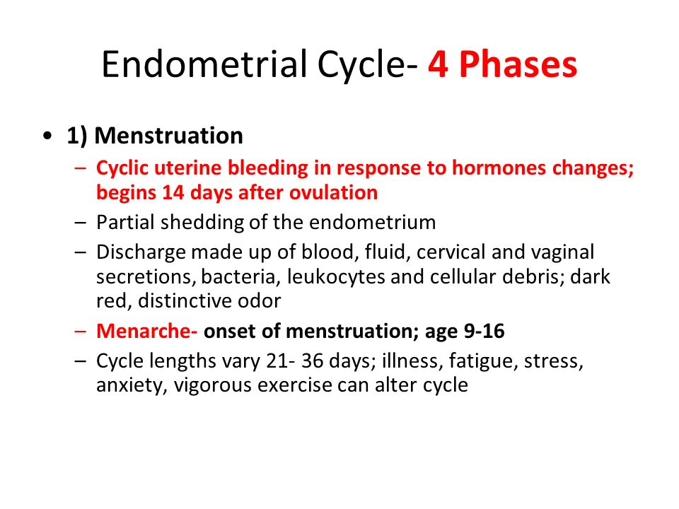 Endometrial Cycle- 4 Phases