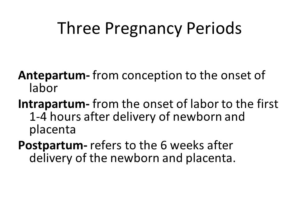 Three Pregnancy Periods