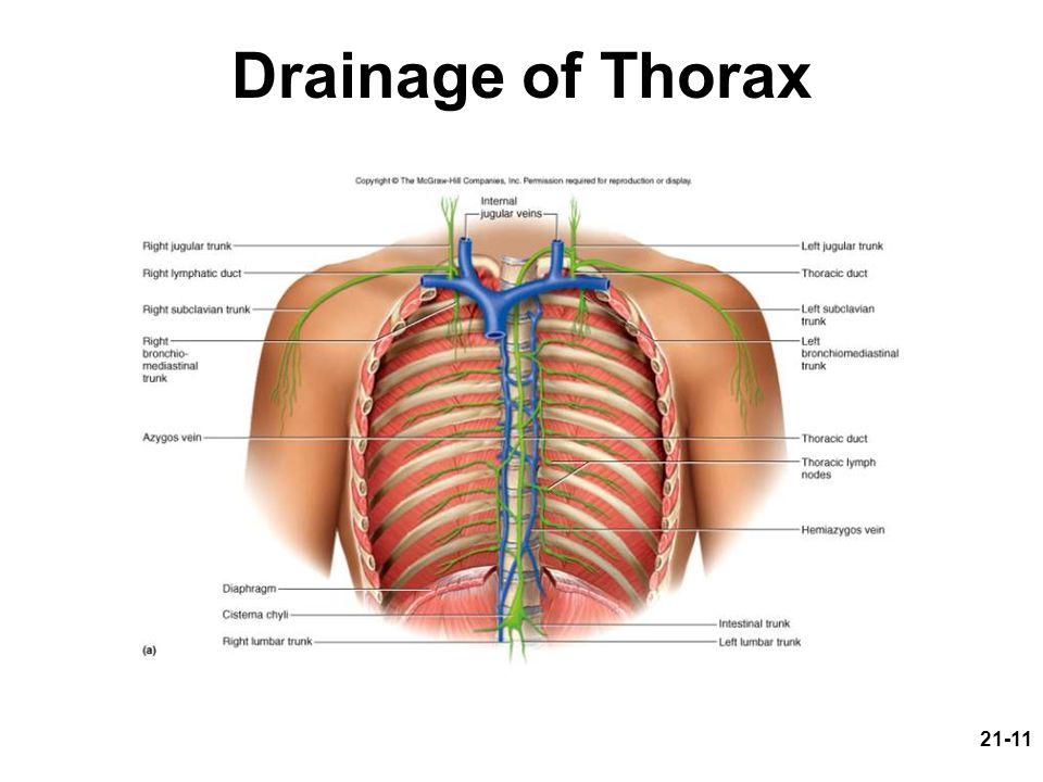 Drainage of Thorax