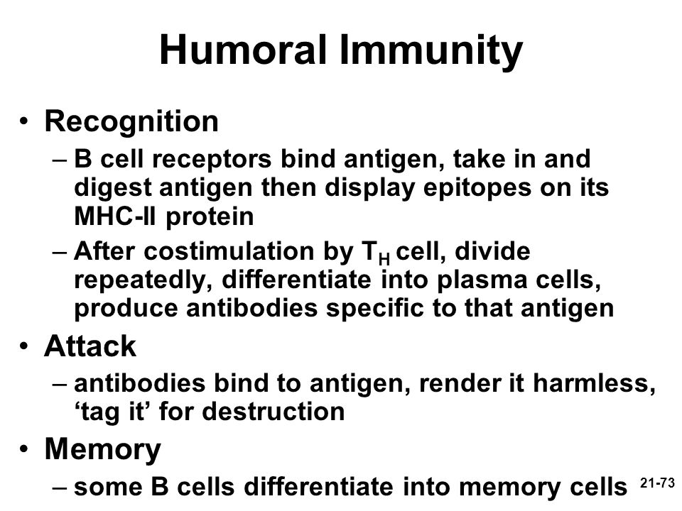 Humoral Immunity Recognition Attack Memory