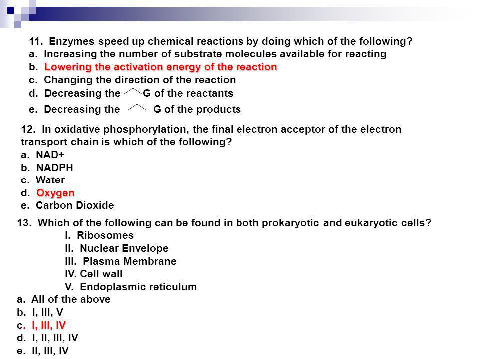 11. Enzymes speed up chemical reactions by doing which of the following