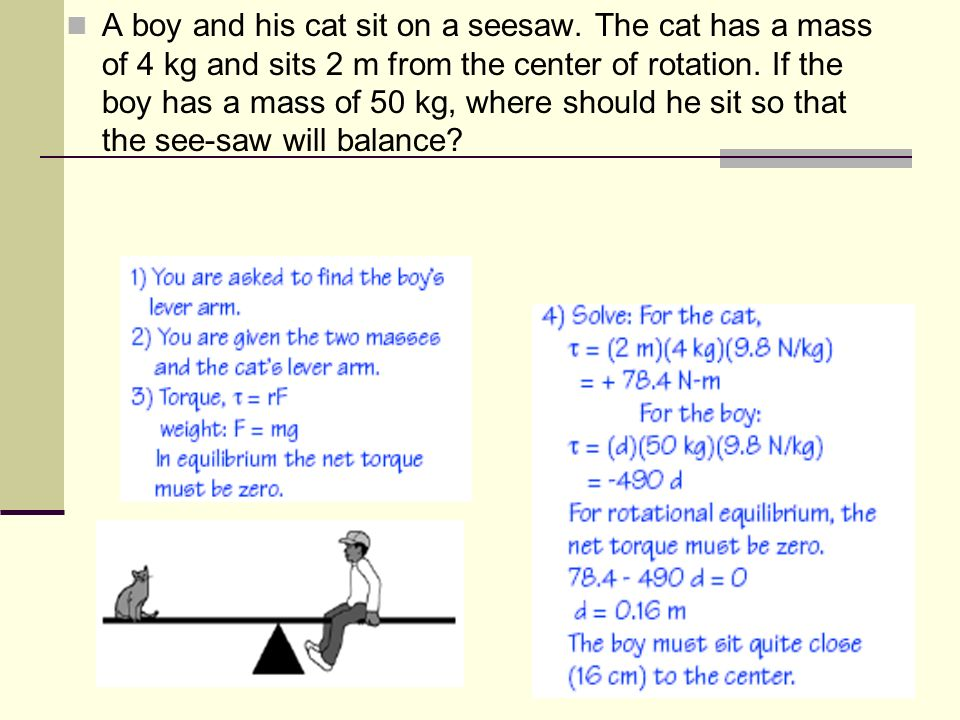 A boy and his cat sit on a seesaw