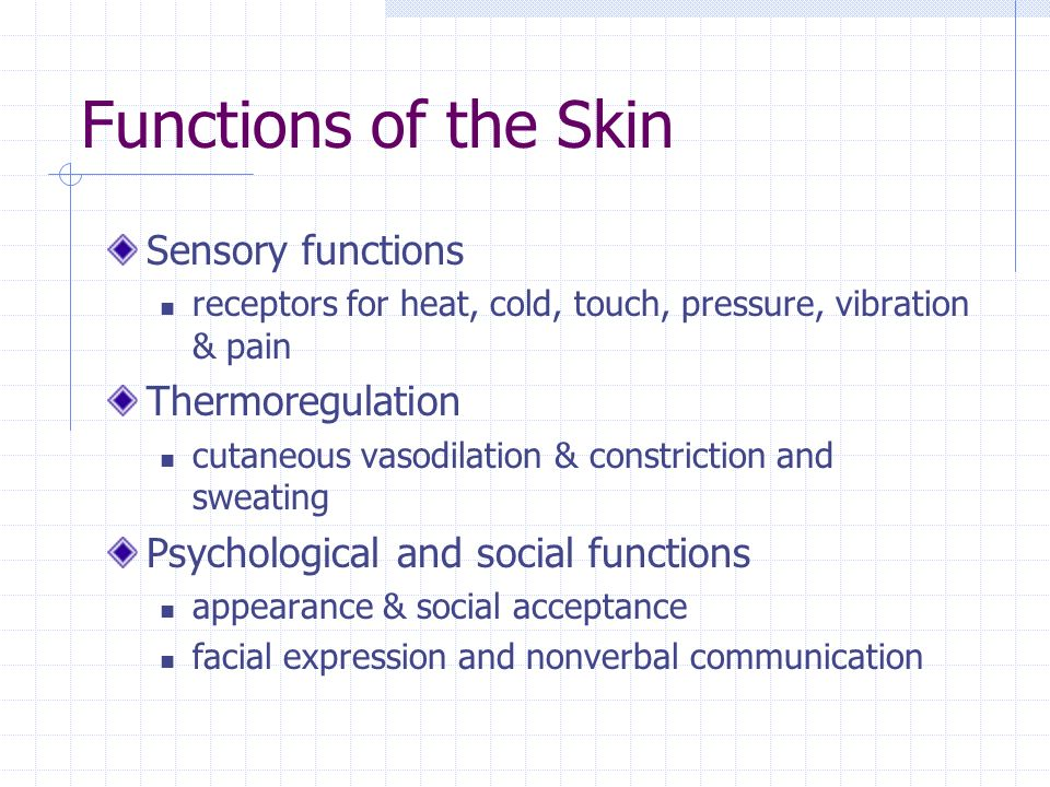 Functions of the Skin Sensory functions Thermoregulation
