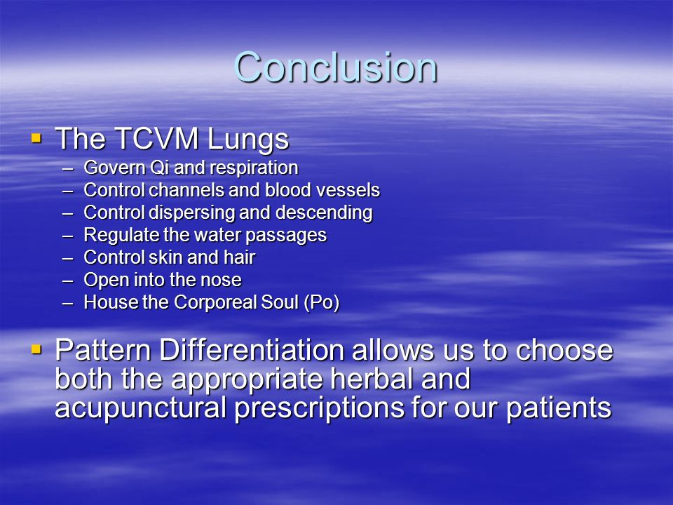 Conclusion The TCVM Lungs