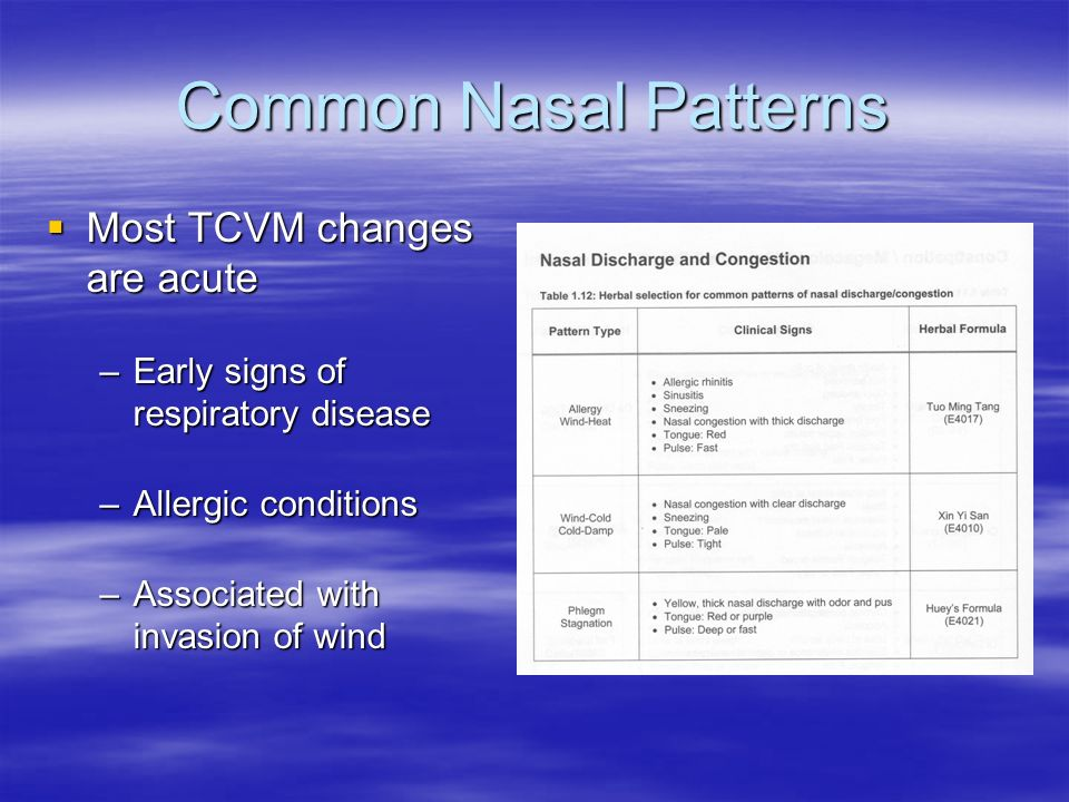 Common Nasal Patterns Most TCVM changes are acute