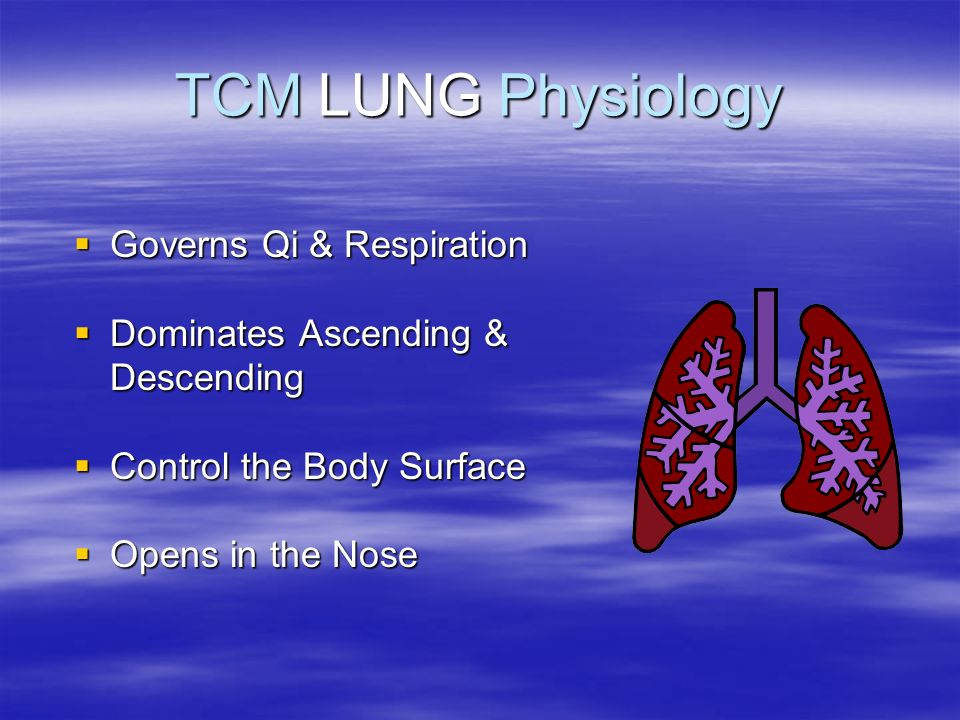 TCM LUNG Physiology Governs Qi & Respiration
