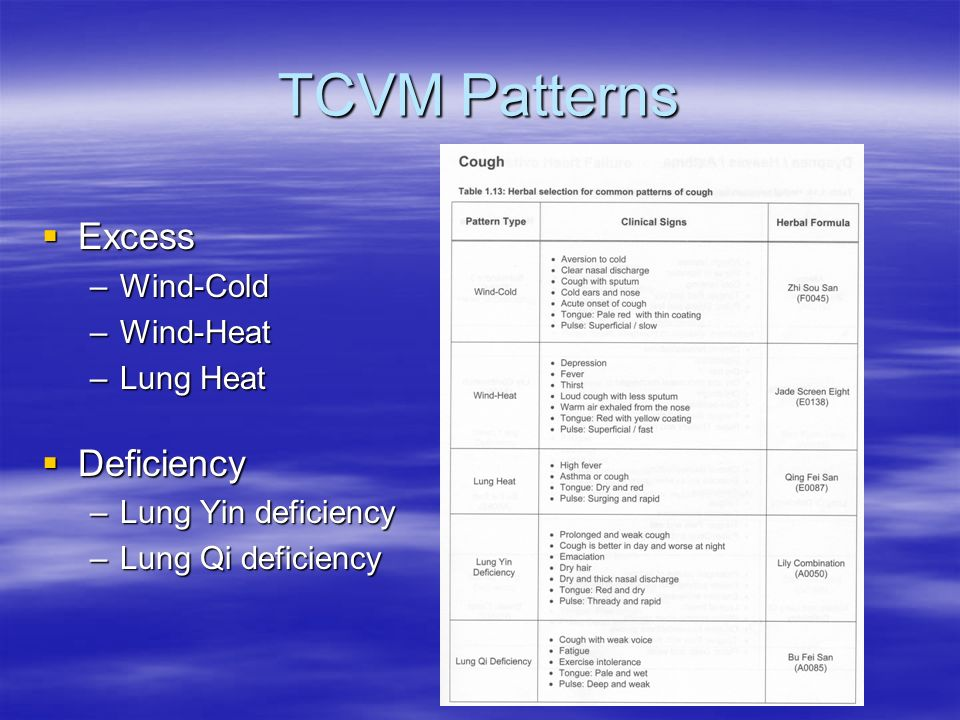 TCVM Patterns Excess Deficiency Wind-Cold Wind-Heat Lung Heat
