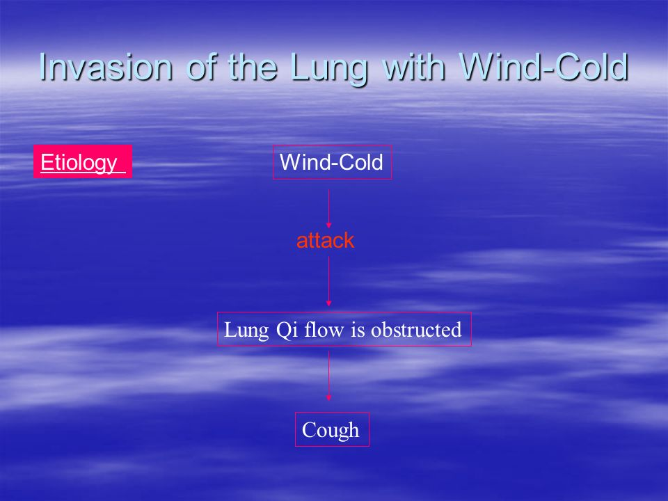 Invasion of the Lung with Wind-Cold