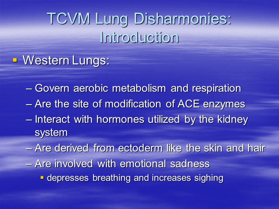 TCVM Lung Disharmonies: Introduction