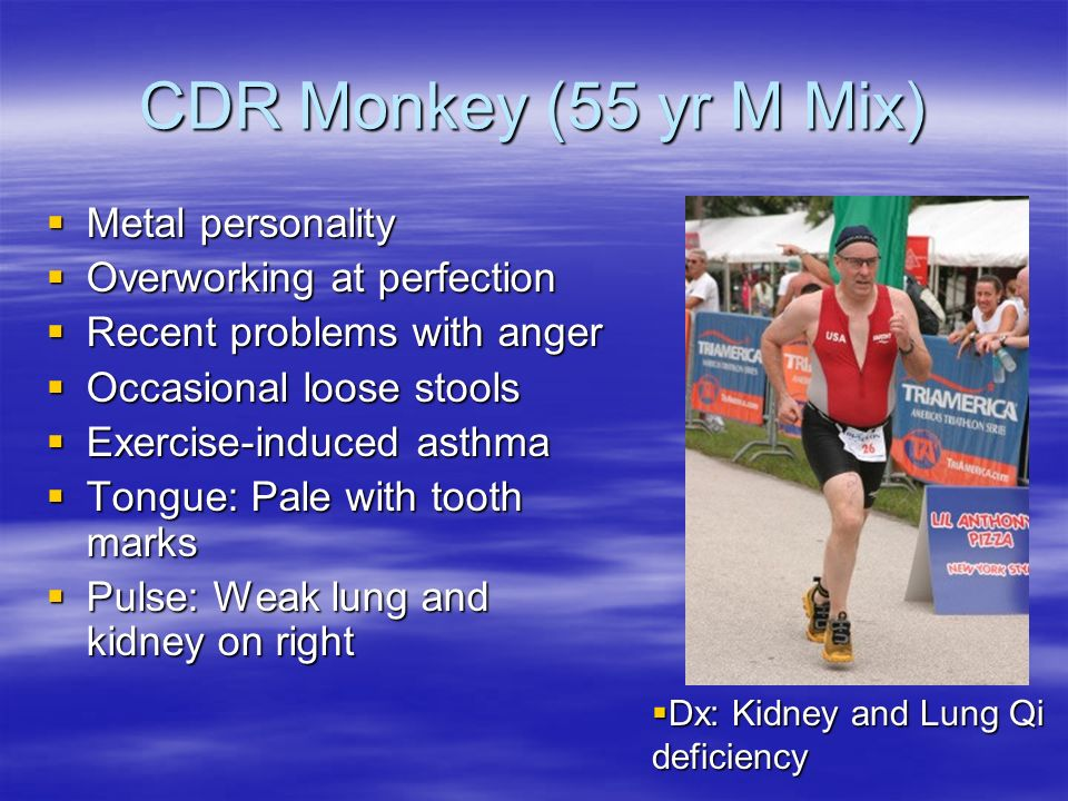 CDR Monkey (55 yr M Mix) Metal personality Overworking at perfection
