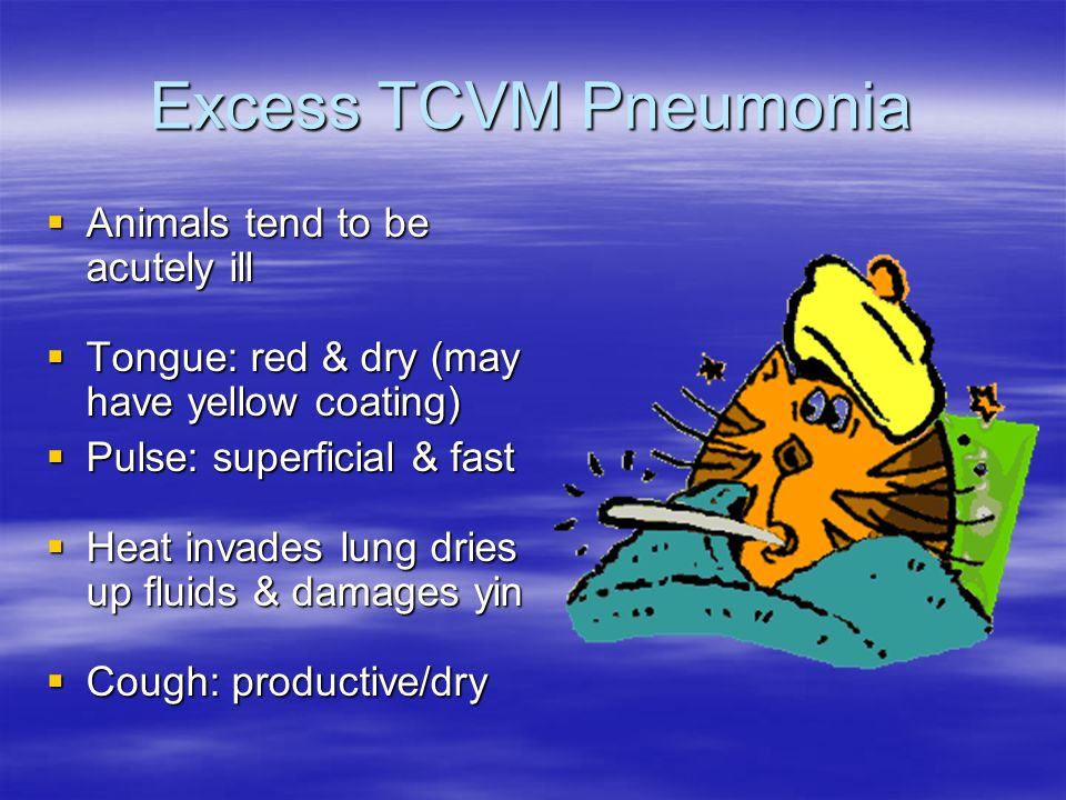 Excess TCVM Pneumonia Animals tend to be acutely ill