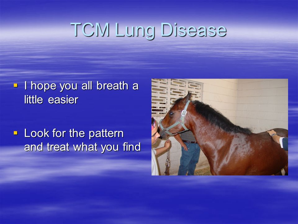 TCM Lung Disease I hope you all breath a little easier