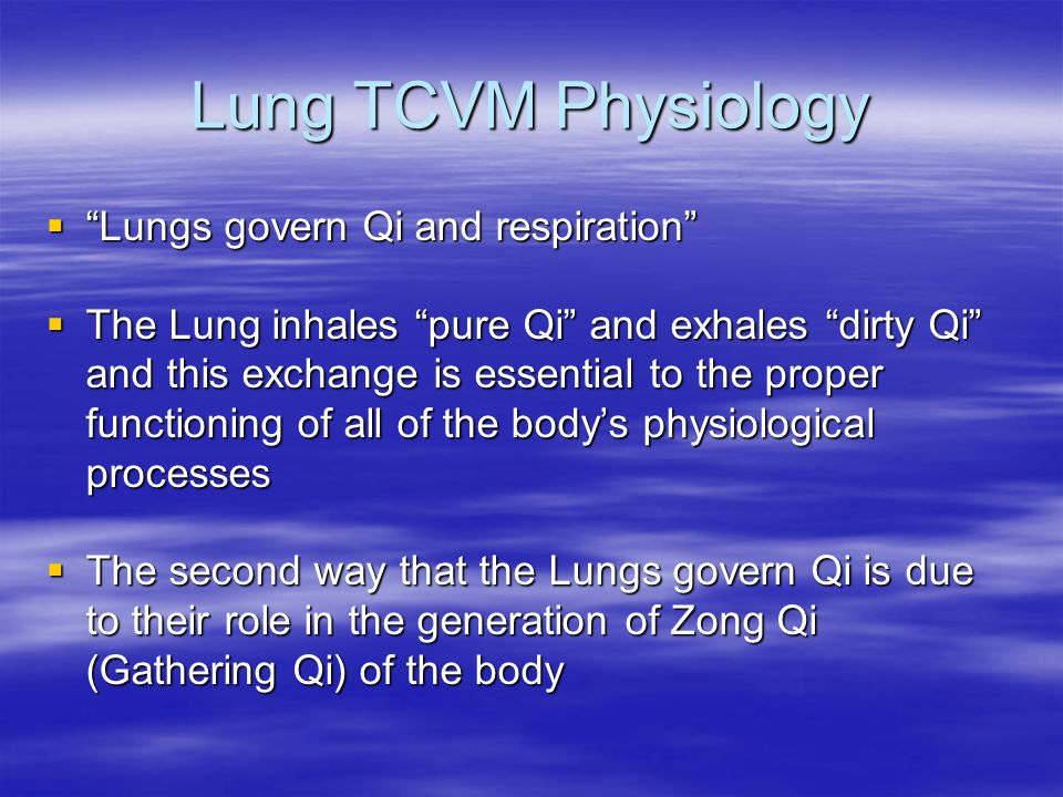 Lung TCVM Physiology Lungs govern Qi and respiration