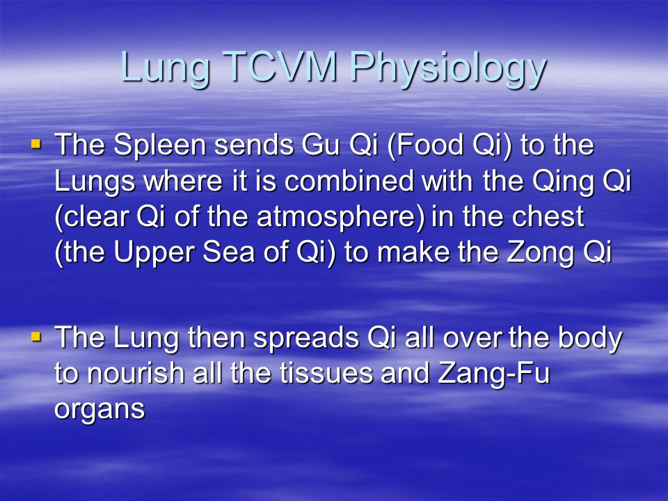 Lung TCVM Physiology