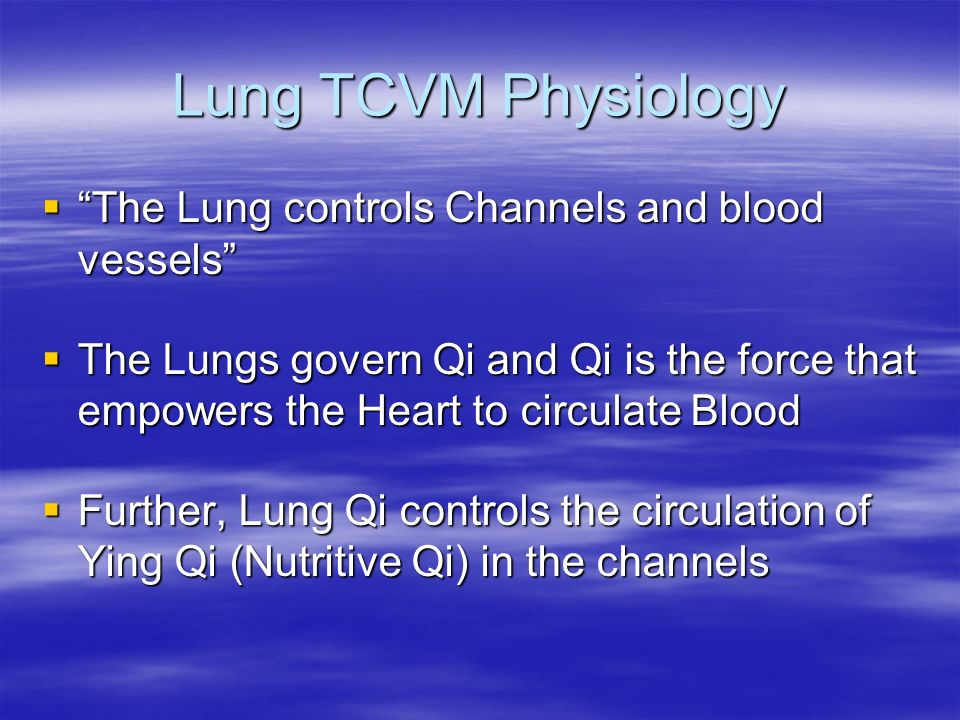 Lung TCVM Physiology The Lung controls Channels and blood vessels