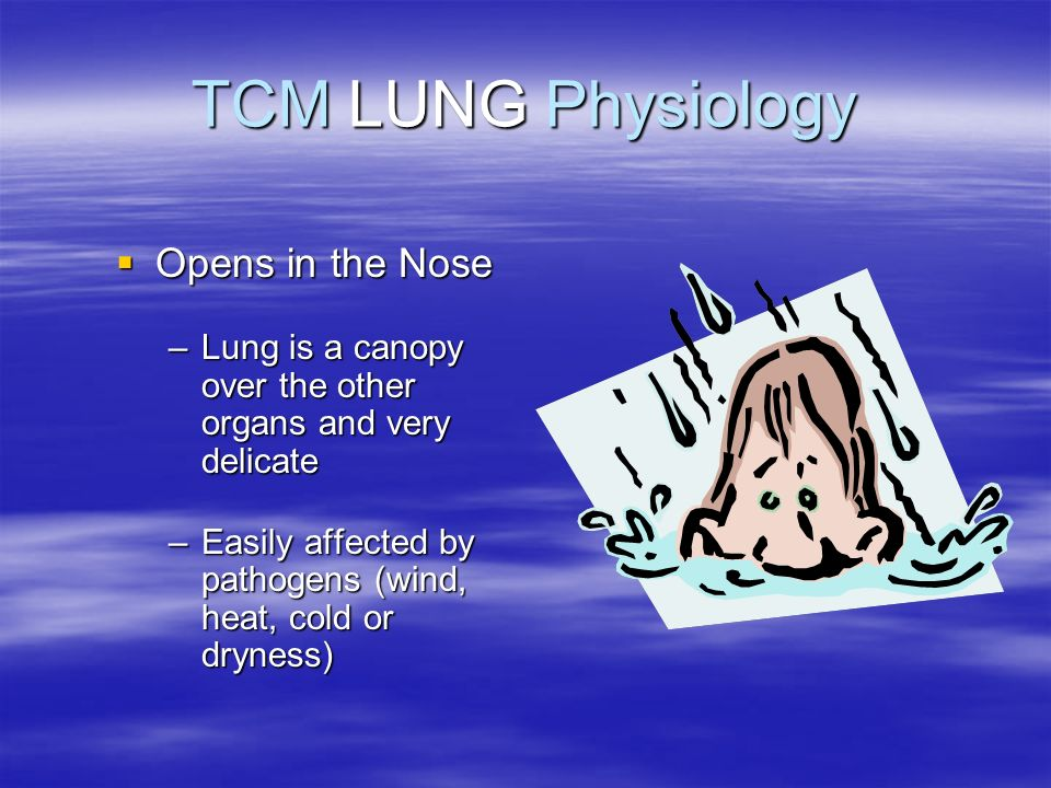 TCM LUNG Physiology Opens in the Nose