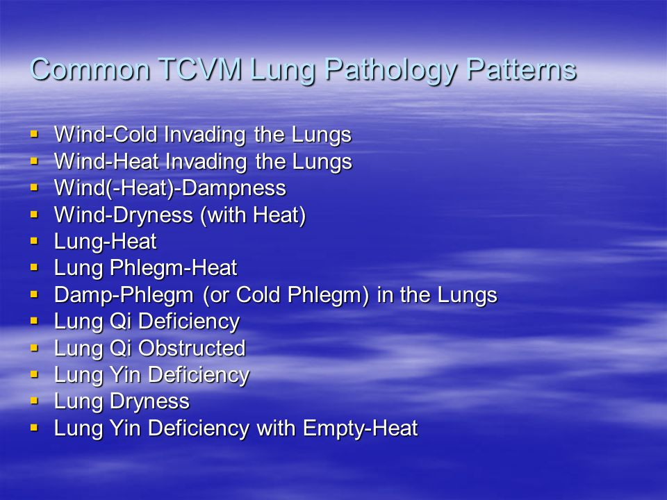Common TCVM Lung Pathology Patterns
