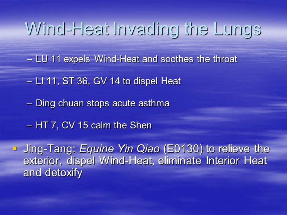 Wind-Heat Invading the Lungs