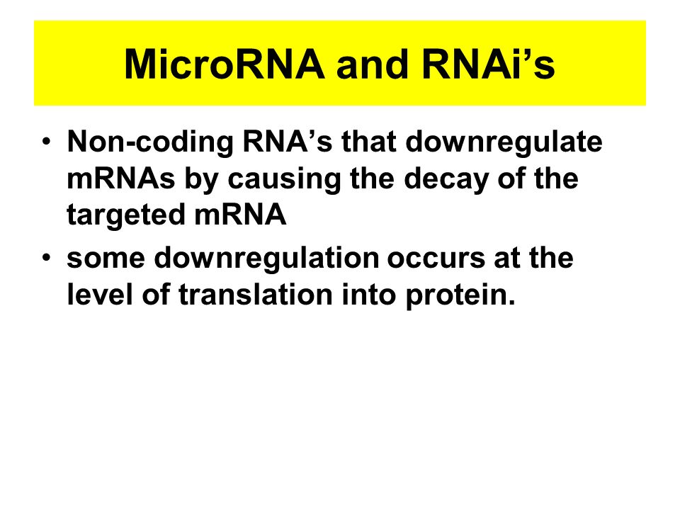 MicroRNA and RNAi's Non-coding RNA's that downregulate mRNAs by causing the decay of the targeted mRNA.