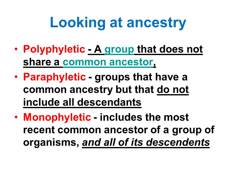 Looking at ancestry Polyphyletic - A group that does not share a common ancestor,