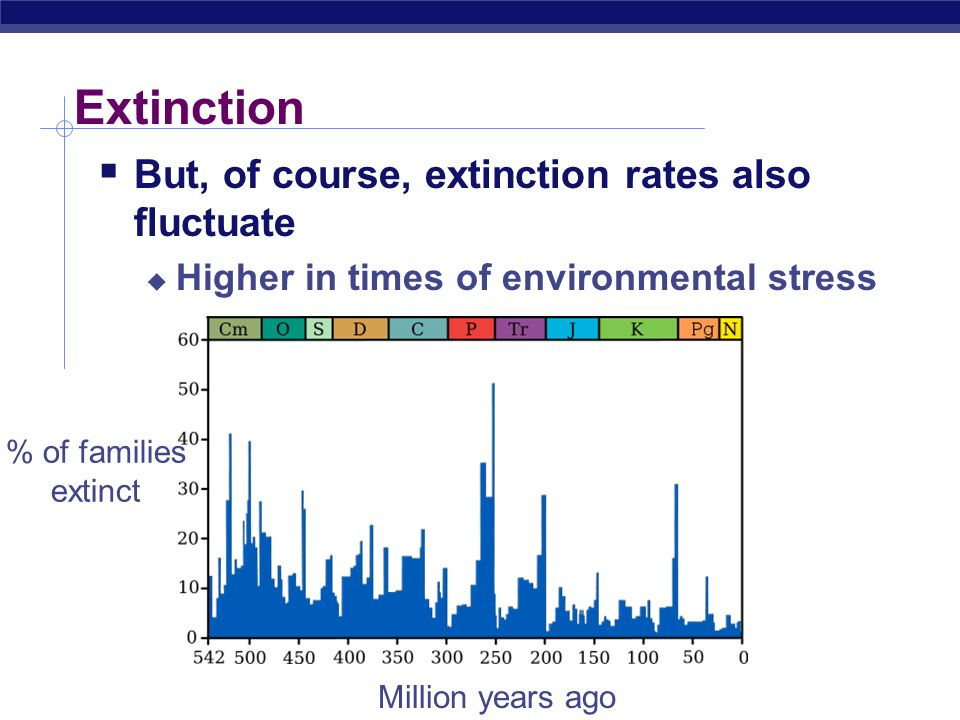 Extinction But, of course, extinction rates also fluctuate