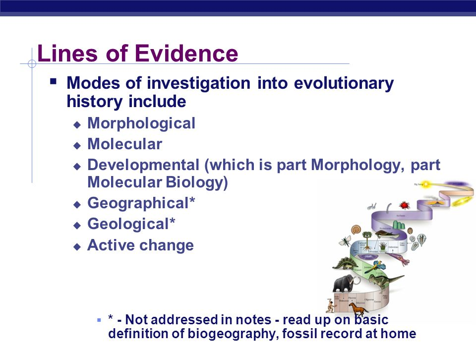 Lines of Evidence Modes of investigation into evolutionary history include. Morphological. Molecular.