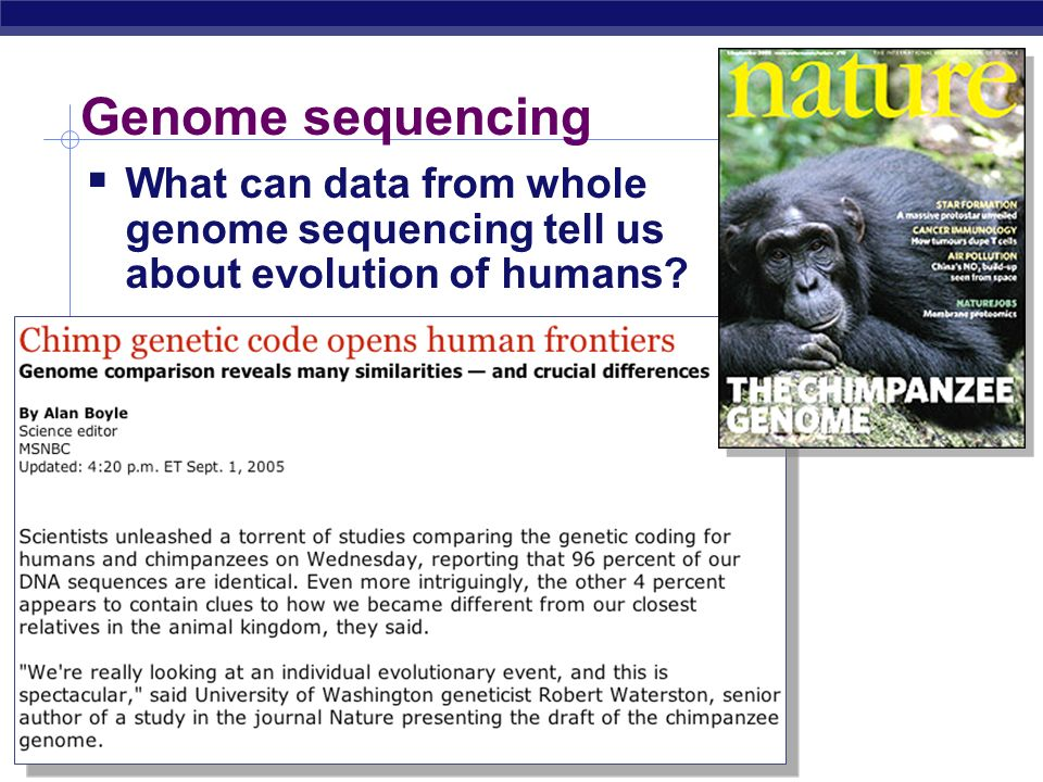 Genome sequencing What can data from whole genome sequencing tell us about evolution of humans